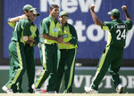 Abdul Razzaq celebrates with teamates