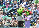 Fans dressed as Mr and Mrs Shrek at SuperSport Park