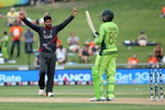 Naveed celebrates Haris' wicket