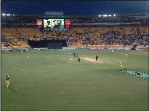 Westpac Stadium, a perfect one-day venue